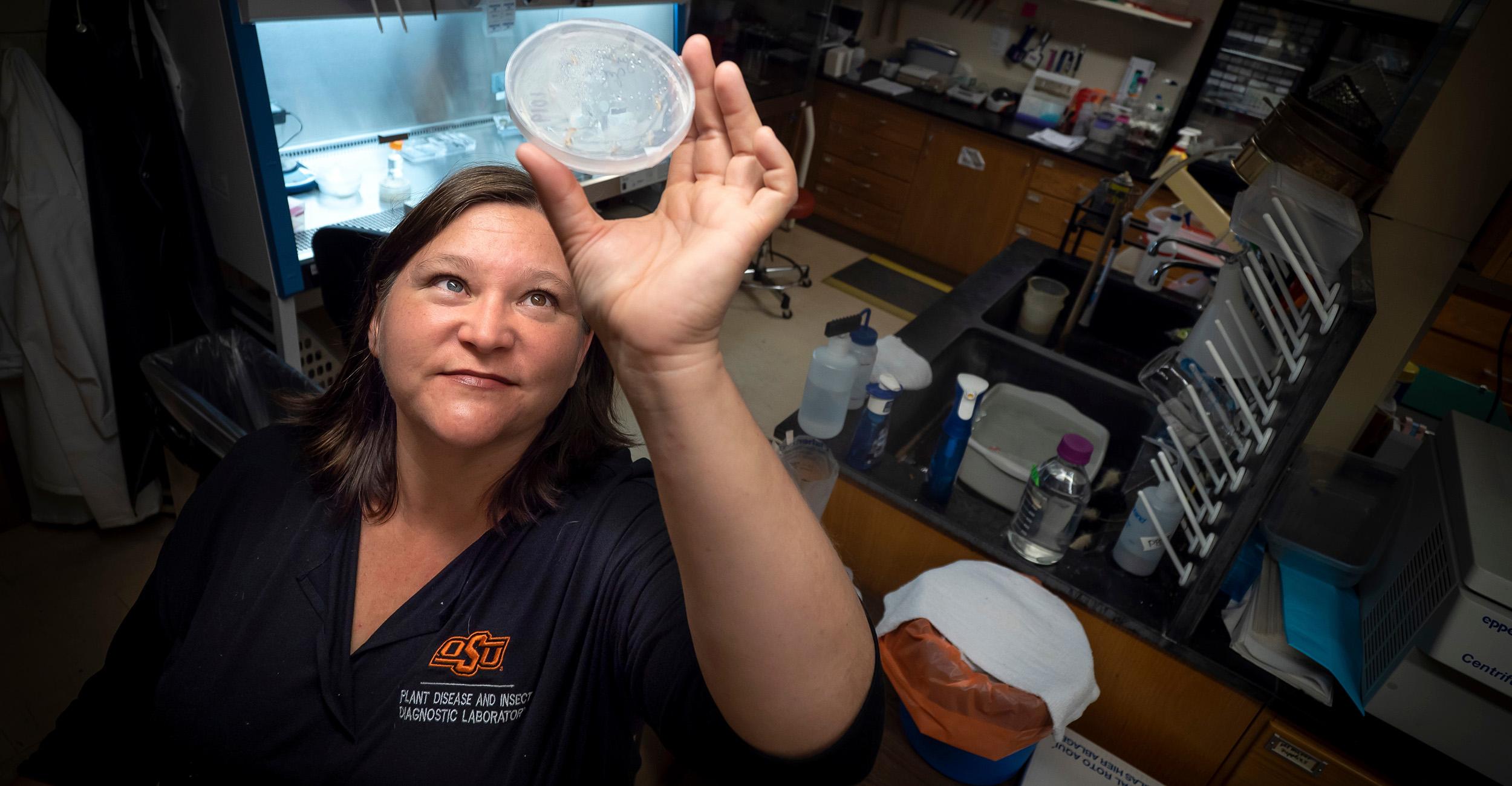 Laboratory director Jen Olson studies test results.