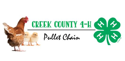 Creek County 4-H Pullet Chain Logo.