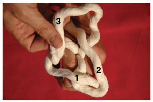 A hand holding three strands of rope wth the tail of the third strand over the tail of the second strand and sliding into the first strand loop.