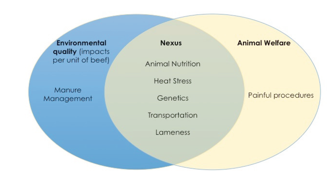 Venn diagram showing nexus between environmental quality and animal welfare