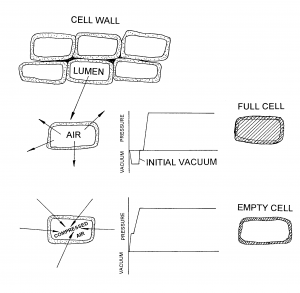 Schematics illustration between full-cell and empty-cell treatment methods.