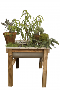 Small garden in metal tub built into a wood table