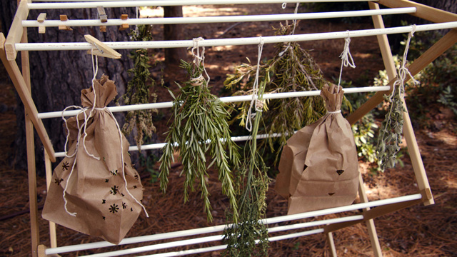 A laundary rack with herbs hanging
