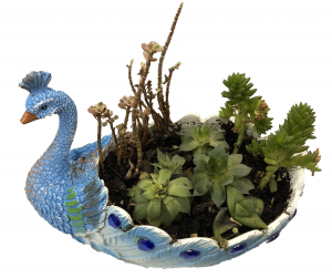 A planter shaped like a peacock which contains multiple plants.