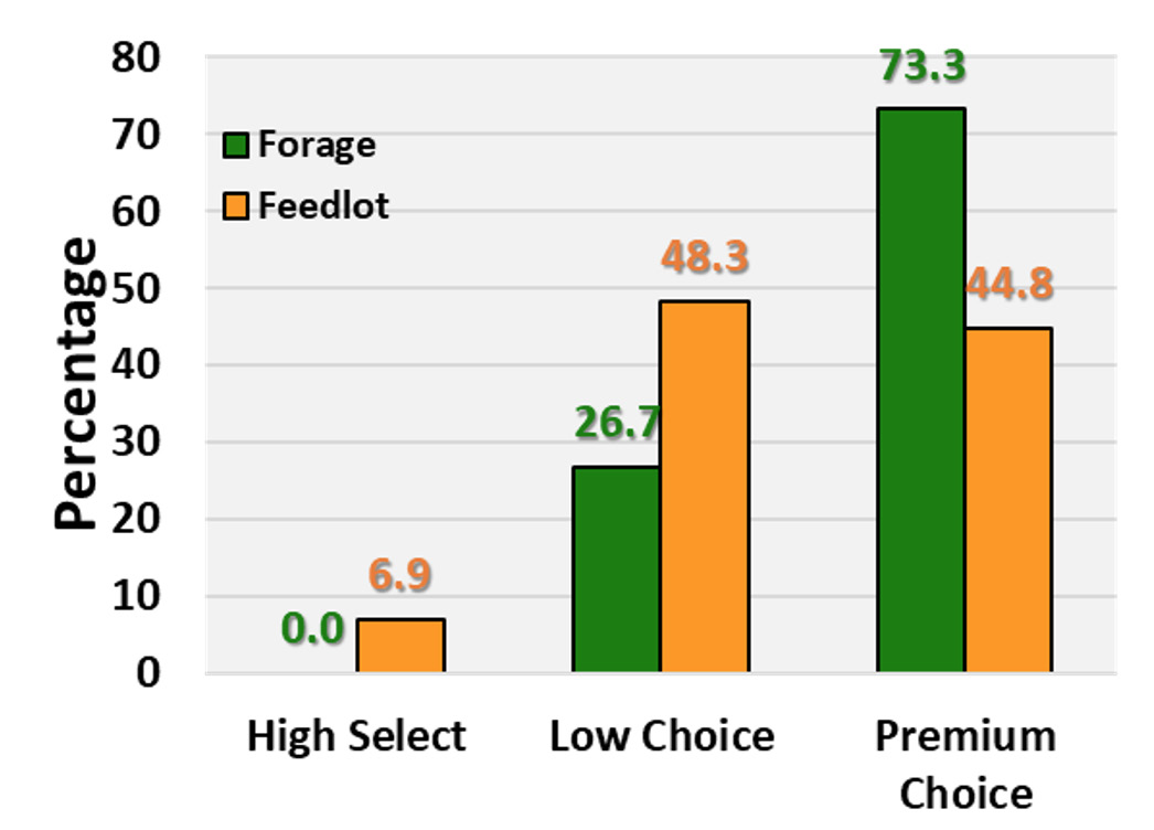 Bar Chart showing the percentage of quality grade for finishing types