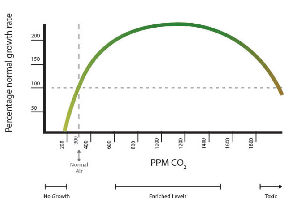 Relation between CO2 concentration and rate of plant growth.