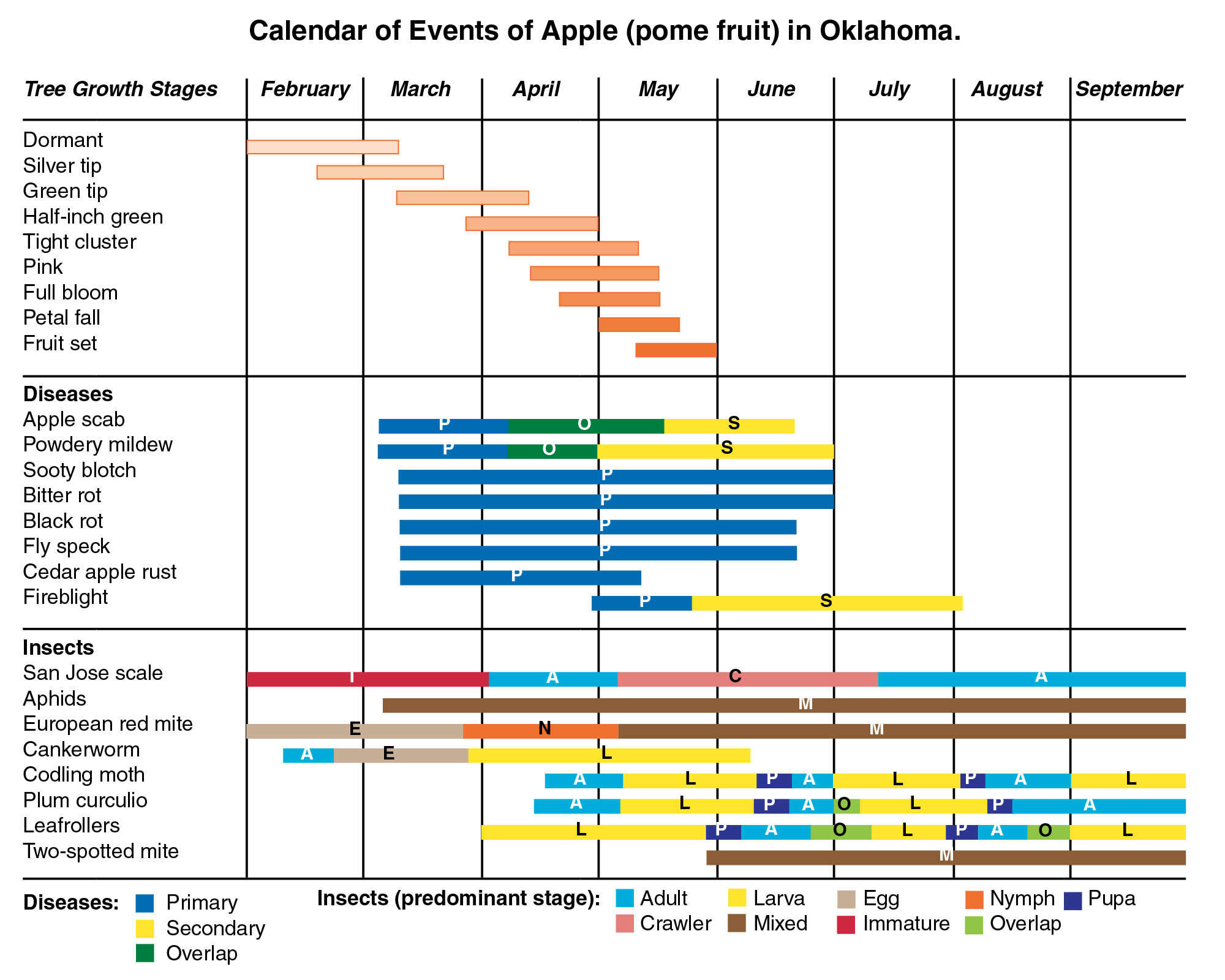 The calendar of events for an apple February through September for tree growth stages, diseases and insects.