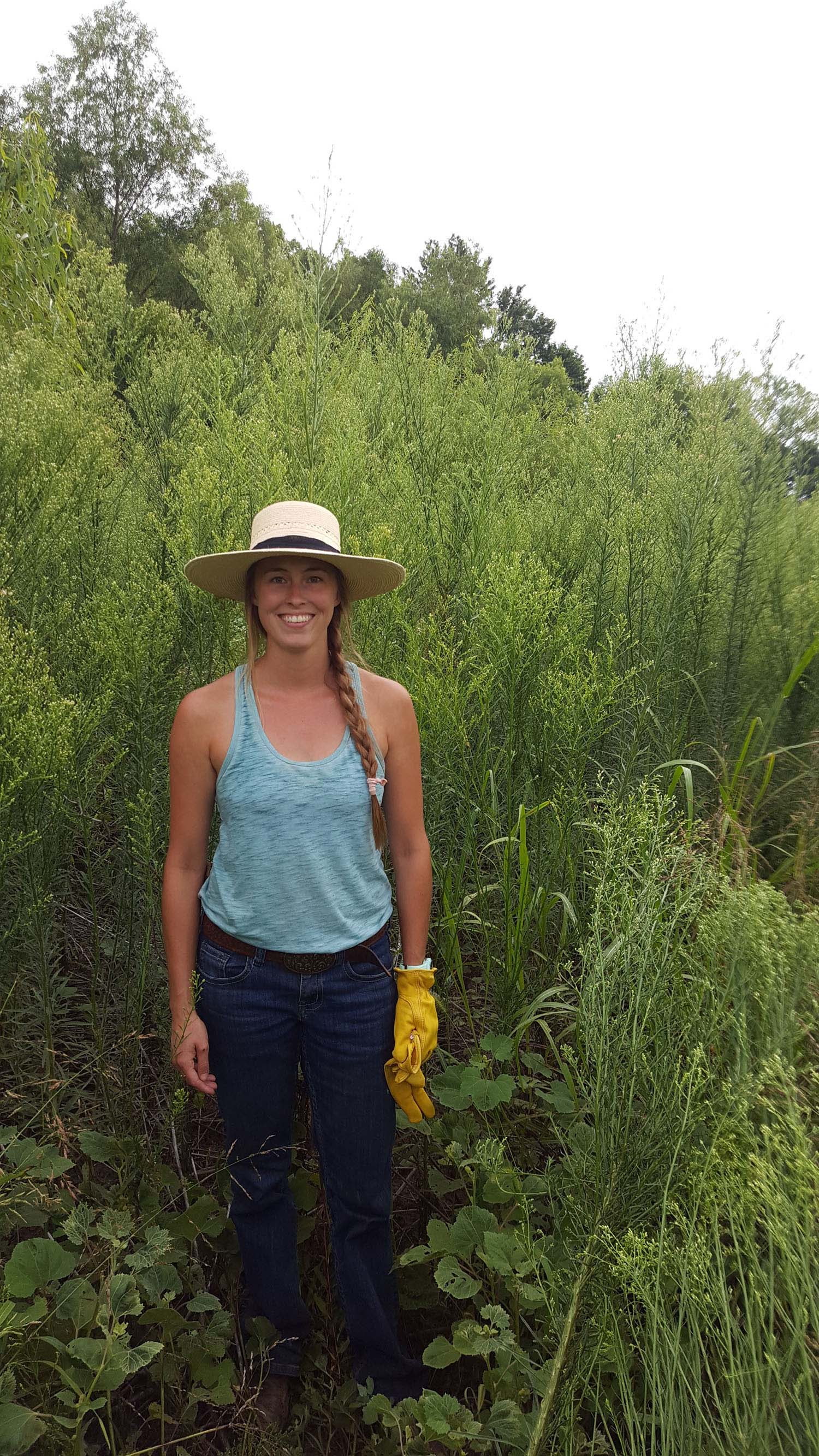 A woman standing in front of a seven-foot-tall green horseweed plant.