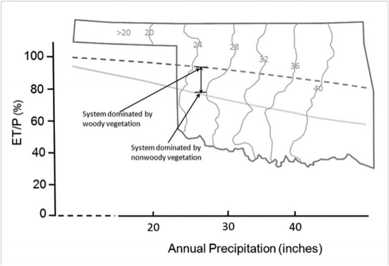 The general relationship between ET/P and annual precipitation developed for woody and non-woody (grass) plants from over 250 watersheds worldwide superimposed on the Oklahoma precipitation map. The two lines represent the percent of precipitation evaporated (also called the ET/P ratio) from watersheds for woody vegetation and grass cover at a given site and climate. The difference between the woody vegetation and grass lines represents a potential increase in ET that may occur following redcedar encroachment. A corresponding loss in streamflow and groundwater recharge may occur as a result if ET is higher.