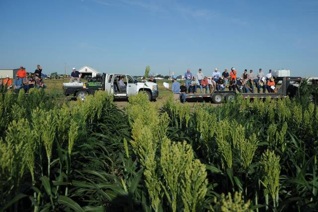 A Field day at the Panhandle research and Extension Center.