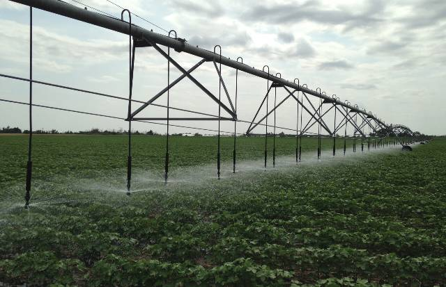 A low-pressure center pivot system in southwestern Oklahoma.