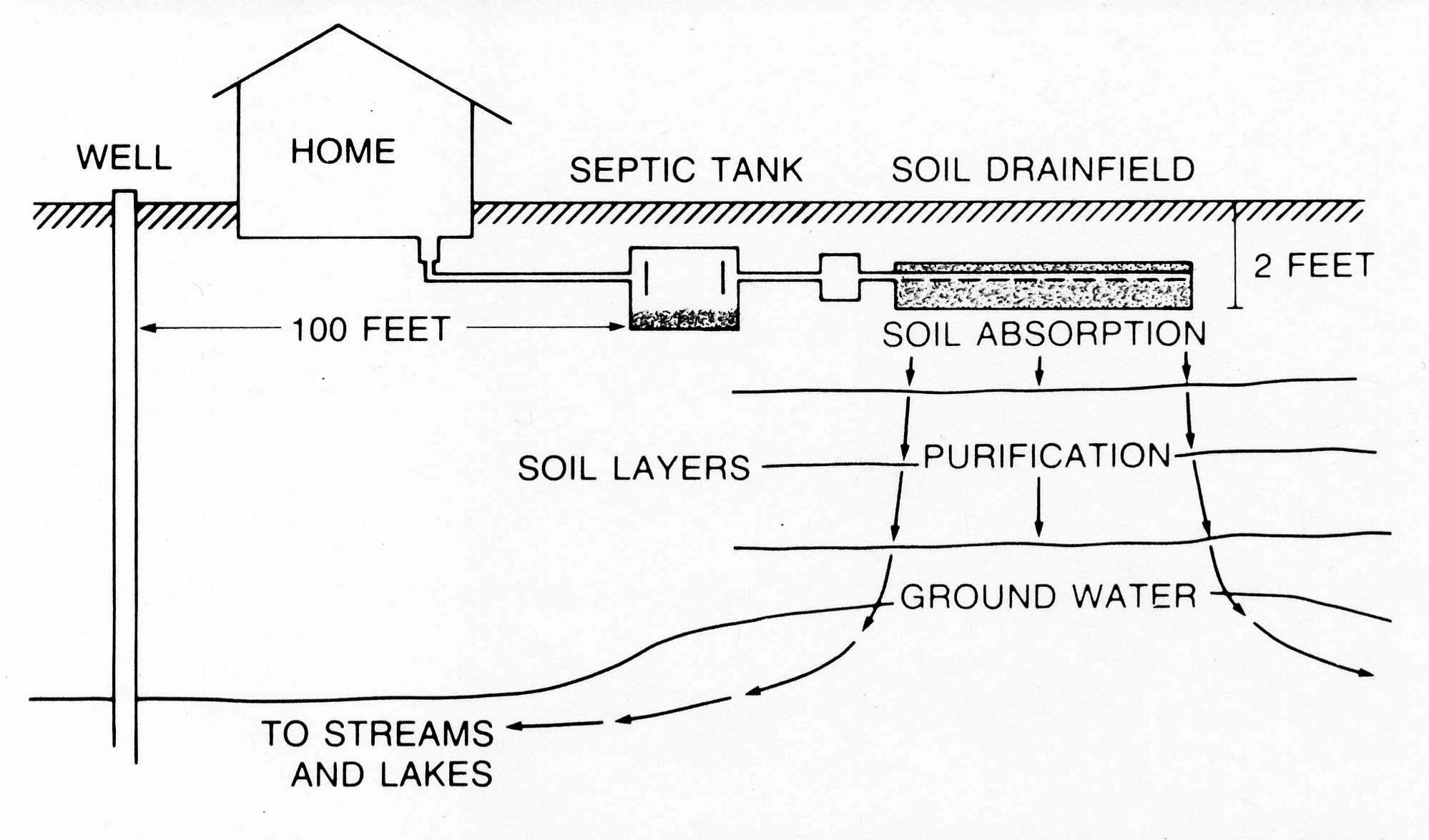 This diagram shows a septic tank-drained treatment system.