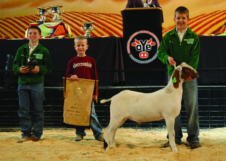 Remaining in control of your goat during a show will help make your experience more successful. This training must take place before you get to the show.