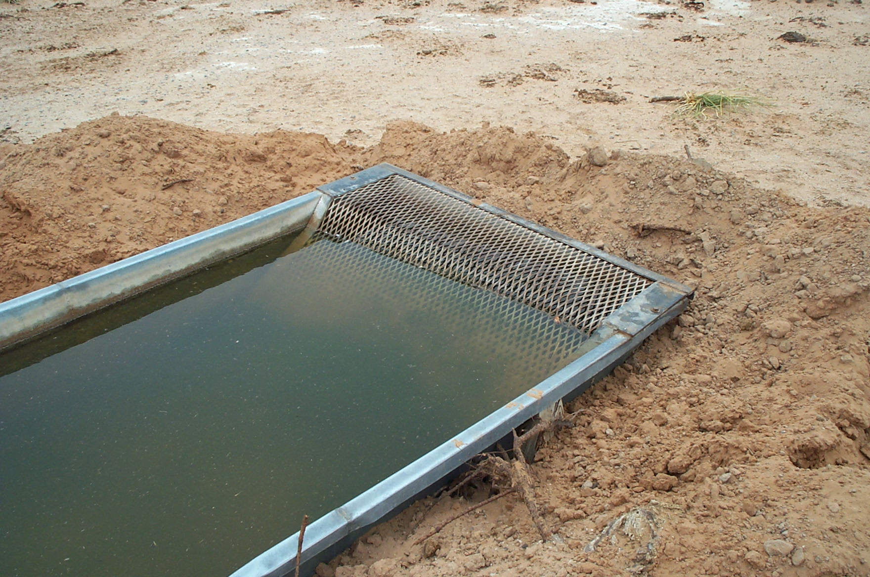 An example of a simple escape ramp that will prevent wildlife death and keep a clean water source available.
