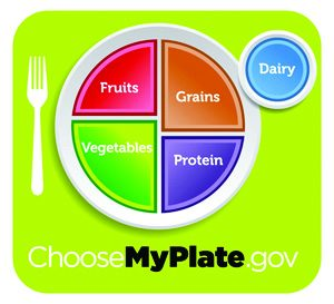 ChooseMyPlate.gov - fruits, grains, protein, vegetables and dairy.