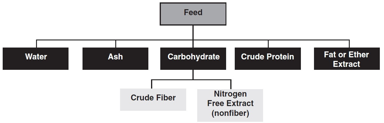 Figure 1. Nutrient concentrations of feed determined from proximate analysis.