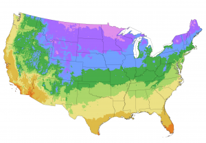 Hardiness Zone Map of the USA