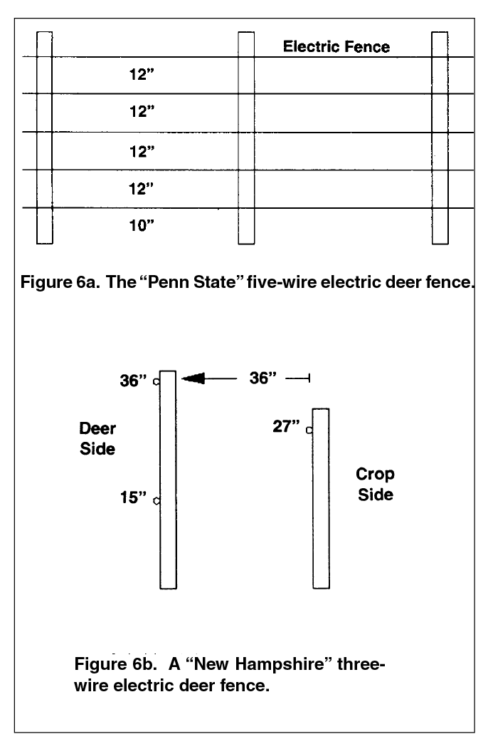 "A ""New Hampshire"" three-wire electric deer fence."