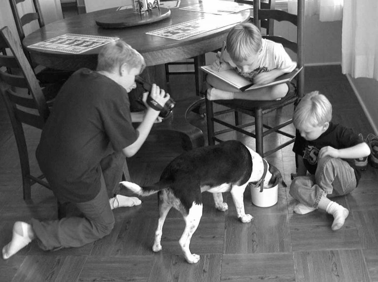 Three citizen scientists conduct a food palatability study with their pet beagle.