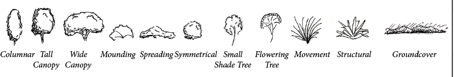 Examples of form and shape of different plants.