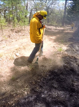 A firefighter using metal leaf rake to clear debris.