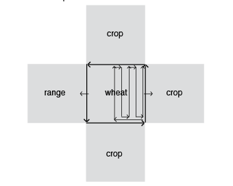 "Illustration of ""back and forth"" wheat harvesting pattern versus ""outside-inward"" pattern."