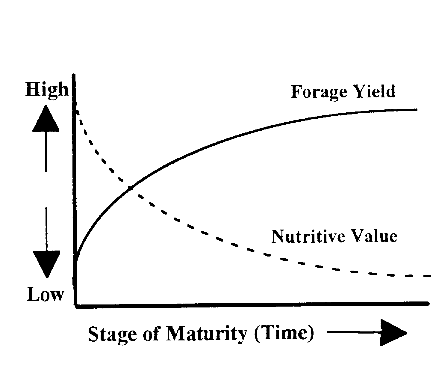 Effect of stage of maturity on forage yield and forage nutritive value.
