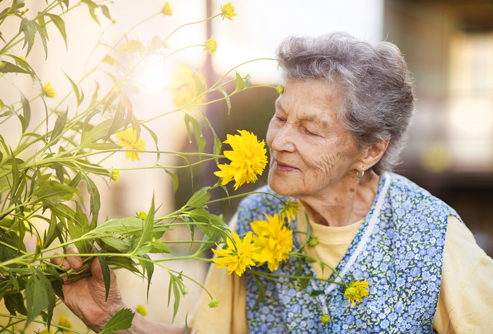 An older lady sniffing a yellow flower in a garden.
