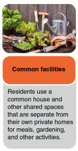 Common facilities where residents use a common house and other shared spaces that are separate from their own private homes for meals, gardening, and other activities.