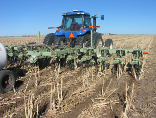 Tractor with a strip-till implement applying anhydrous ammonia in a field.