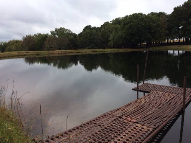 A dock featured for angling.