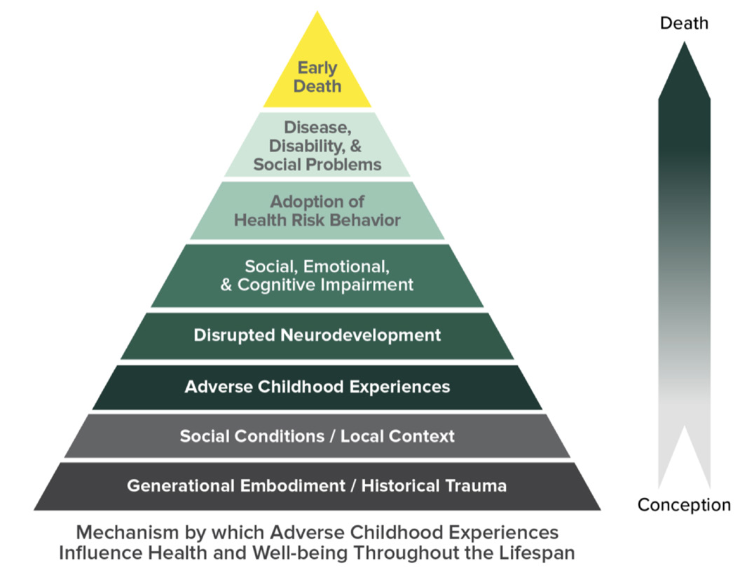 Pyramid showing the effects of adverse childhood experiences