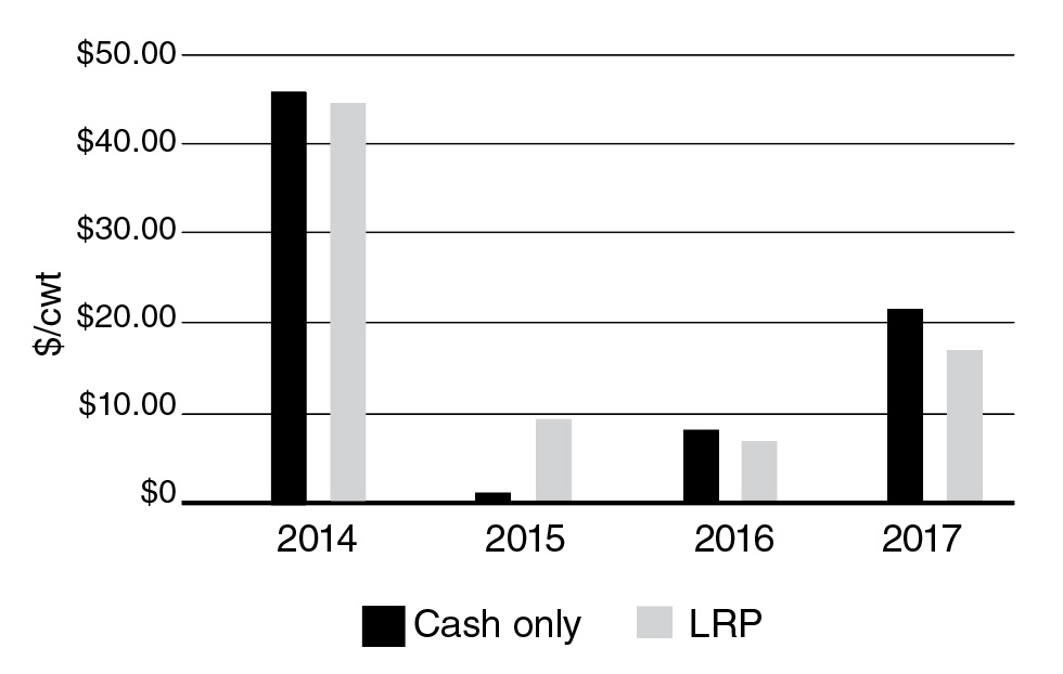 The differene in net cash profit for a summer stocker venture operating on a cash-only basis vs. engaging in LRP.