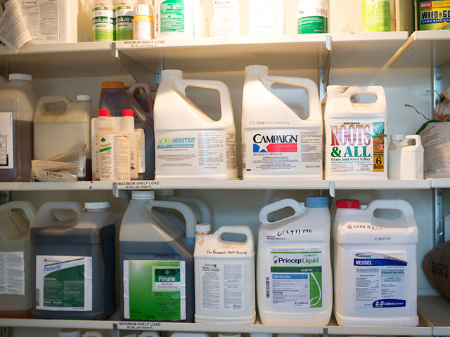 Three shelves with different kinds of pesticides lining them.